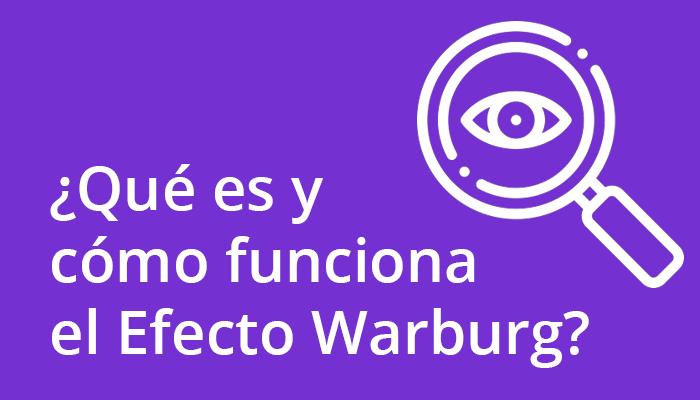 como funciona el efecto warburg